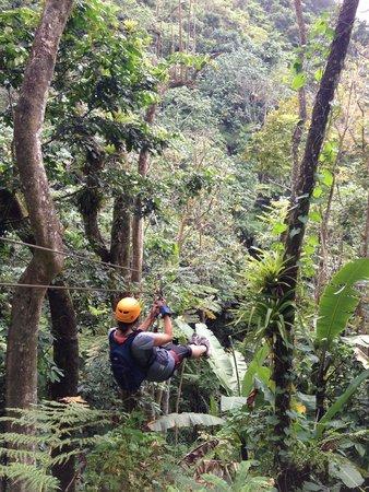 Rocaliza Adventure Tours : Ziplining