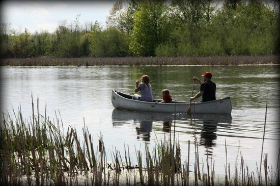 Daisy Hill Bed and Breakfast : canoeing on the river