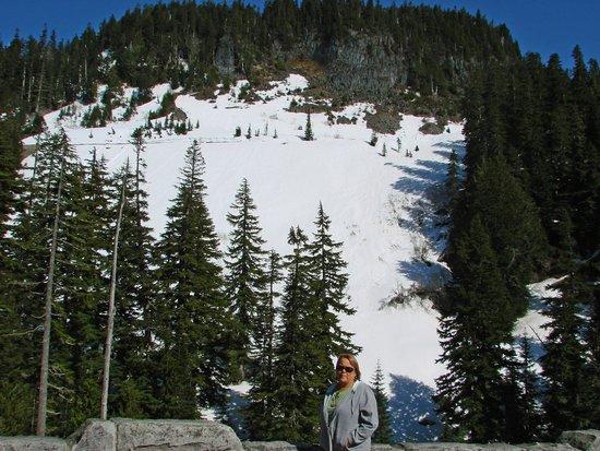 Mount Rainier : View from Narada Falls