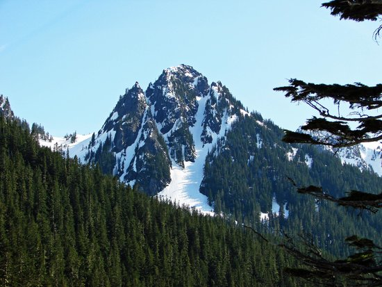 Mount Rainier : View from Park Road