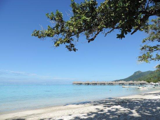 Sofitel Moorea Ia Ora Beach Resort : Vue de la plage