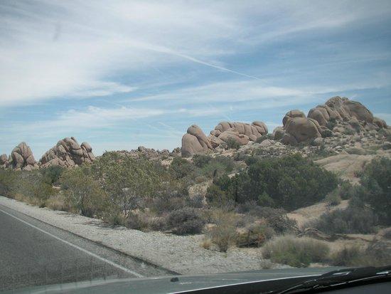 Joshua Tree National Park : Rock formations