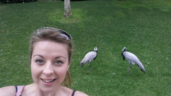 Loro Parque : Embarrassing bird selfie moment.