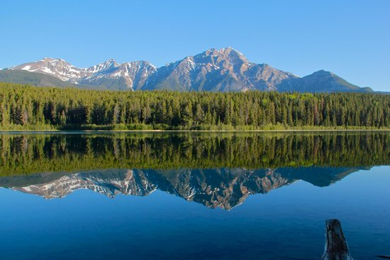 Patricia Lake Bungalows Resort: Calm reflections in the morning