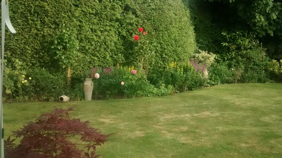 garden at Latchetts Cottage