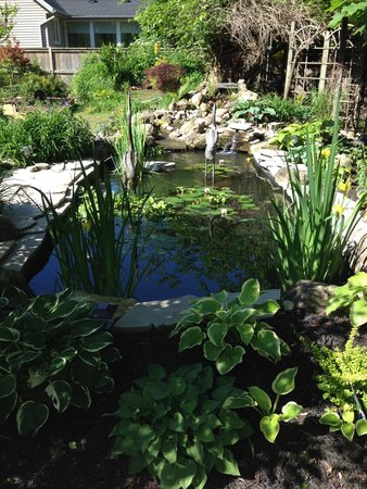 Schoolmaster's House Bed and Breakfast: The peaceful garden