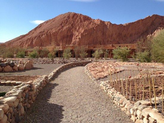 Alto Atacama Desert Lodge & Spa: The Alto Atacama grounds