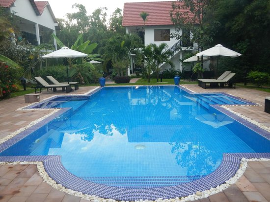 Community Residence Siem Reap : The swimming pool