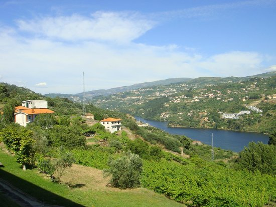 Douro Palace Hotel Resort & Spa : View from the room
