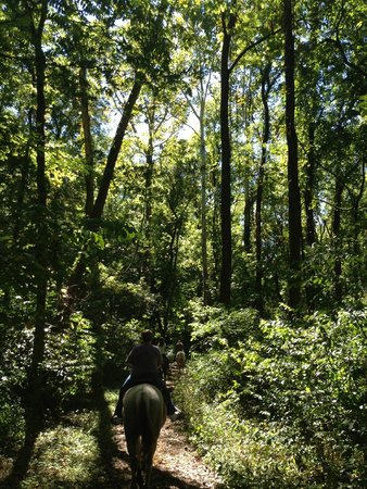 Whitewater Memorial State Park: Whitewater Guided Trail Rides