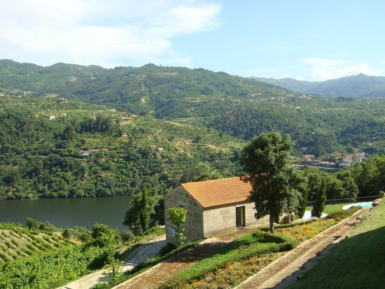 Douro Palace Hotel Resort & Spa : View of the garden and valley from the room