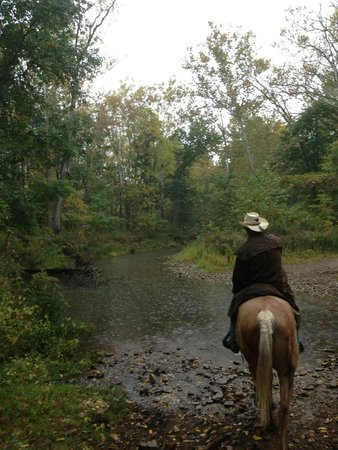 Liberty, IN: Whitewater State Park - Guided Trail Ride