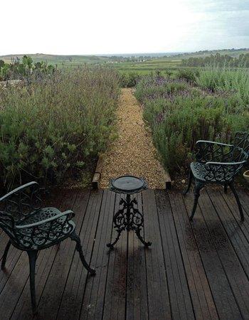 La Foresteria Planeta Menfi: vue depuis la chambre