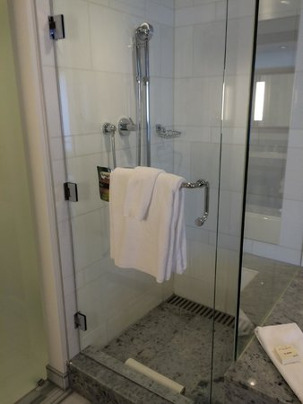 Fairmont Pacific Rim: shower