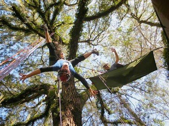 Canopy Climbers: Bat Hangs and Treeboat Hammocks!