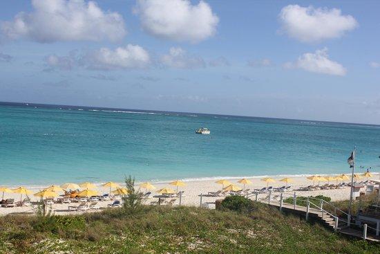 Alexandra Resort: ocean view
