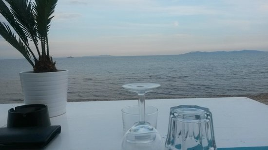 C t mer hy res restaurant avis num ro de t l phone photos tripadvisor - Restaurant bord de mer hyeres ...