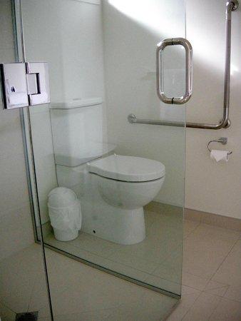 Beachfront Resort: Accessible bathroom