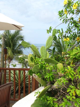 Club Med Ixtapa Pacific: Lushes green throughout