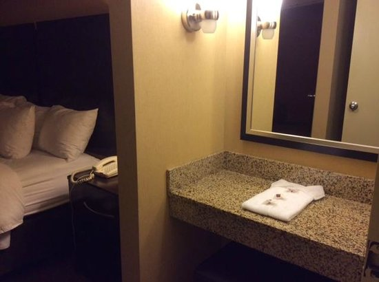 Holiday Inn Express & Suites Downtown Buffalo: closet dressing area