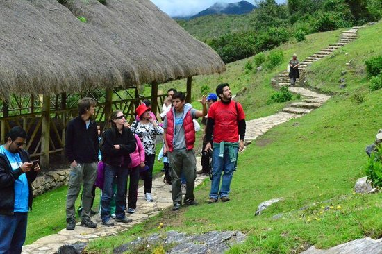 Amazon Expedition Turismo Sostenible  -Day Tours
