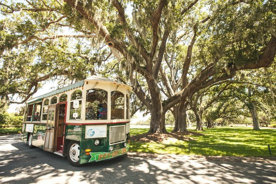 ‪St. Simons Trolley Island Tours‬