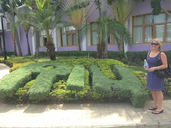 Landscaping Next Door Picture Of Hotel Riu Palace Jamaica
