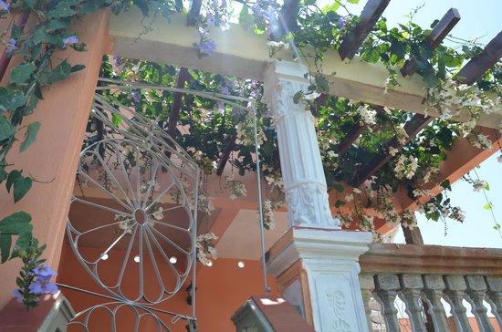 Hostal Yahima y Ariel: Weg zur Dachterrasse