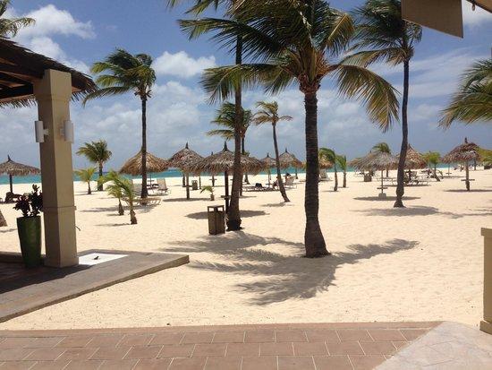 Manchebo Beach Resort & Spa: Sunshine...