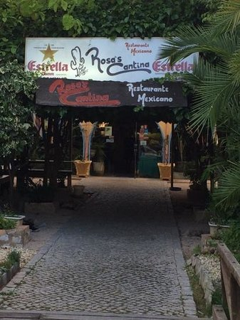 Rosa's Cantina : nice food, nice price, friendly staff