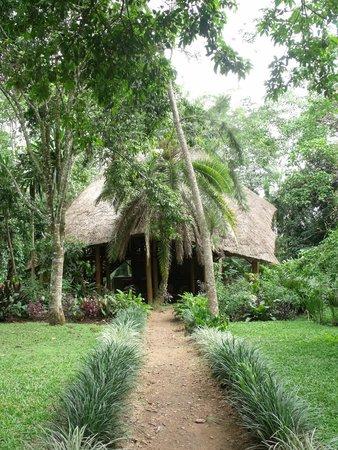 Kibale Forest Camp : Centraal paviljoen
