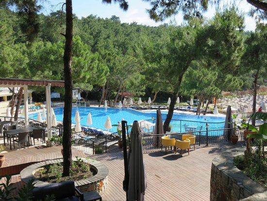 Bodrum Park Resort: piscine près plage