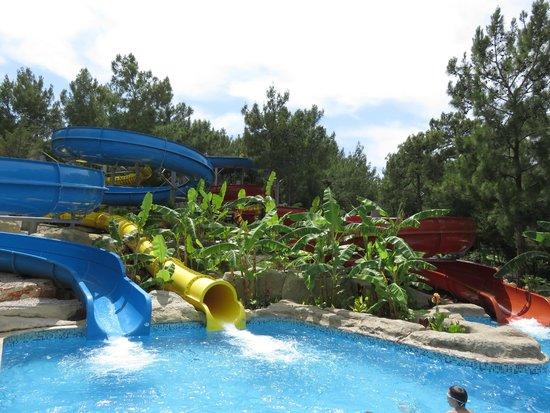 Bodrum Park Resort: toboggans aquatiques