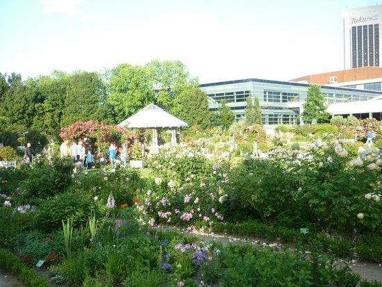 Park Planten un Blomen: Изобилие цветов