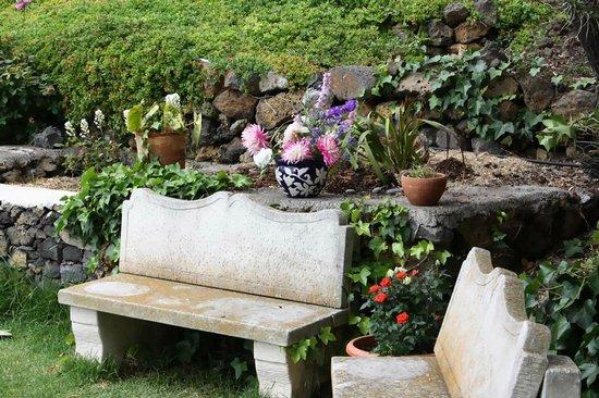 Finca Alcala: jardin