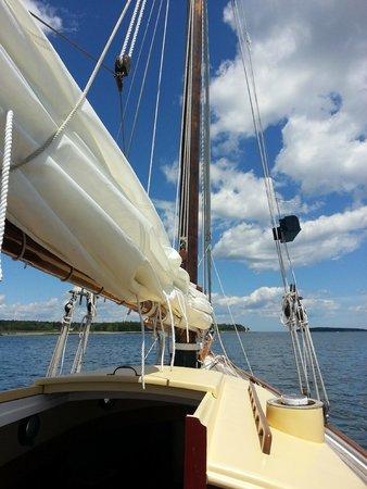 Sail Acadia: Alice E.