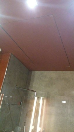 Petit Palace Museum Hotel: Soffitto del bagno
