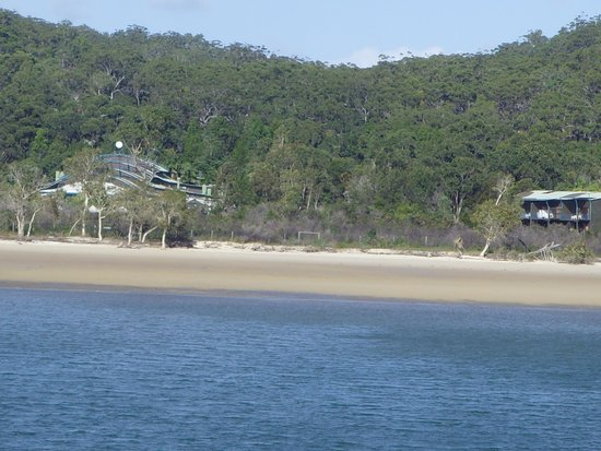 Kingfisher Bay Resort : well camouflaged