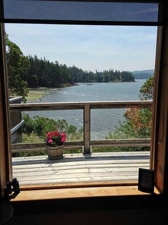 Arbutus Cove Guesthouse: Part of the view from the cottage!