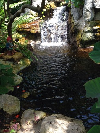 Sachs Butterfly House: Waterfall inside butterfly sanctuary