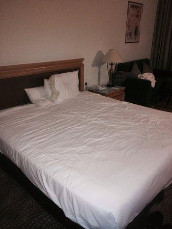 Isrotel Dead Sea Hotel & Spa : The room