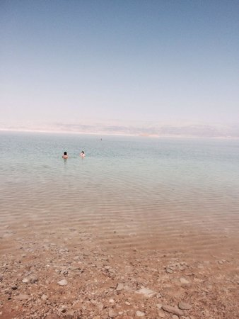 Isrotel Dead Sea Hotel & Spa : The beach