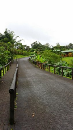 Arenal Manoa Hotel: walk to the front desk from our room