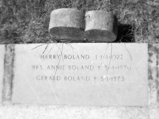 Glasnevin Cemetery Museum: harry boland
