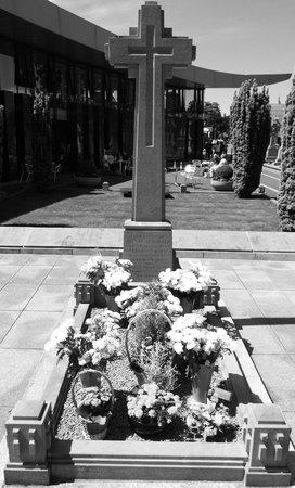 Cementerio de Glasnevin: michael collins