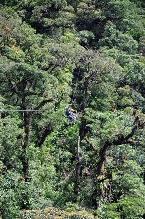 Parque Selvatura: The 1KM zip line.  Both boys went tandem with the guide