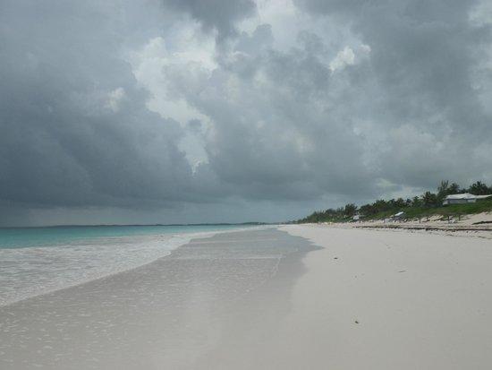 Pink Sands Beach: Cloudy Beach
