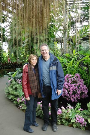 Longwood Gardens : Beautiful background