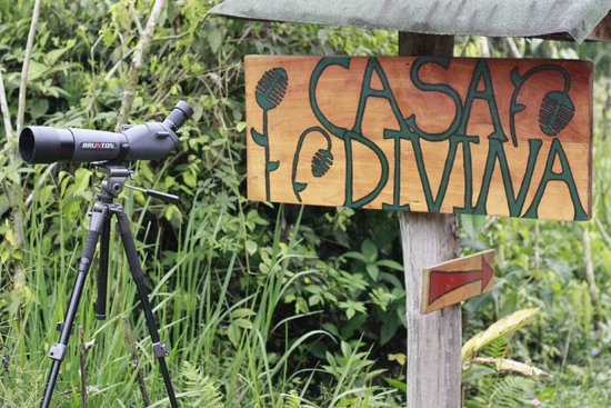 Welcome to Casa Divina Lodge