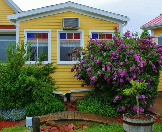 Gardens of Hope: Lilacs smell so good at the entrance